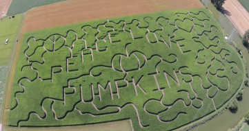 Every year a new corn maze design appears.