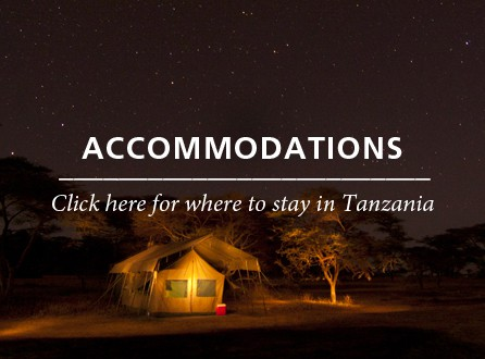 Accommodations Tanzania