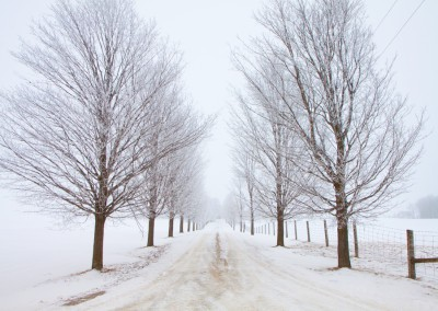 Ontario Country Road in winter