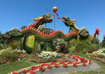 MosaiCanada 2017 dragons fighting