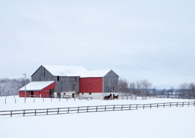 Red barn Ontario Winter in Caledon