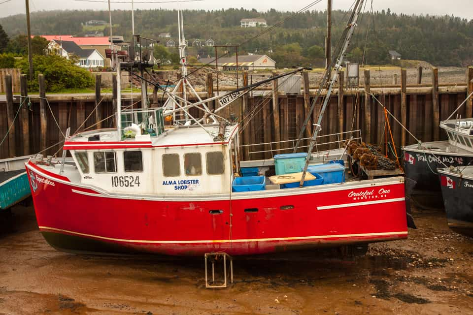Maritimes NB Alma low tide