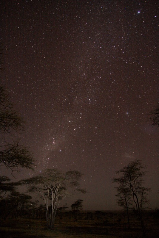 Tanzania starry nights