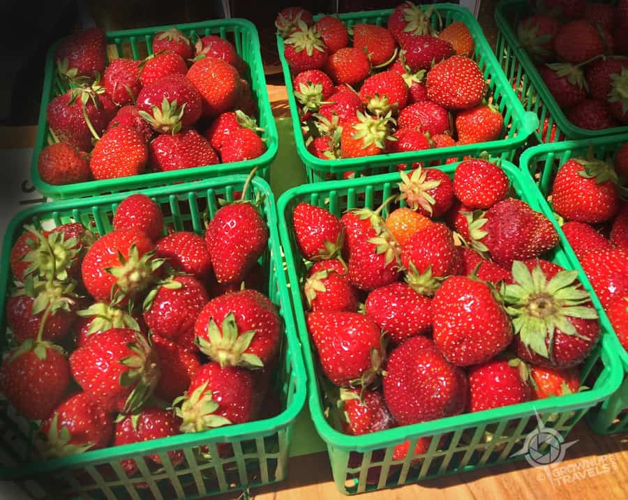 There's nothing like in-season strawberries!