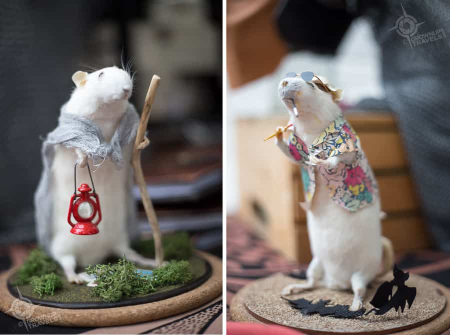 Taxidermy came into its own in Victorian times, often using whimsical subject matter for parlour displays.