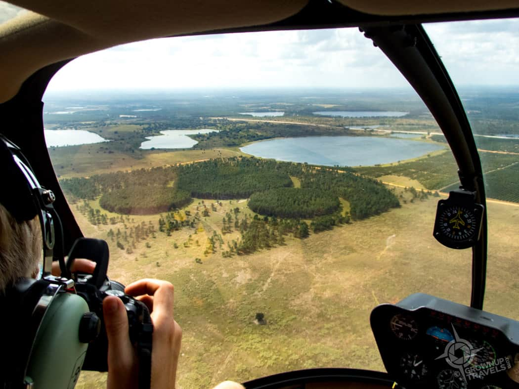 helicopter view of Mickeys Forest