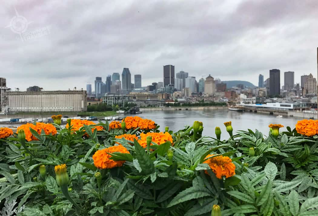 Habitat 67 Montreal port and flowers