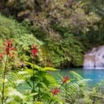 Get Close to Nature in Cuba's Escambray Mountains