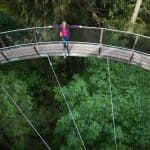 BC's Top Destination Attraction: Capilano Suspension Bridge Park