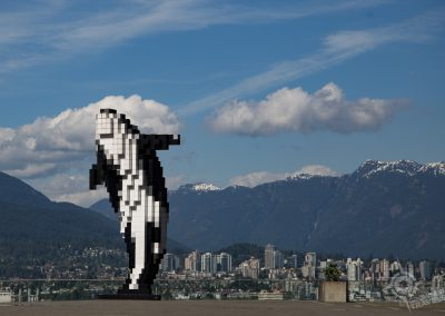 Vancouver waterfront Orca British Columbia