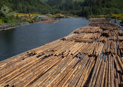 Logging on Vancouver Island