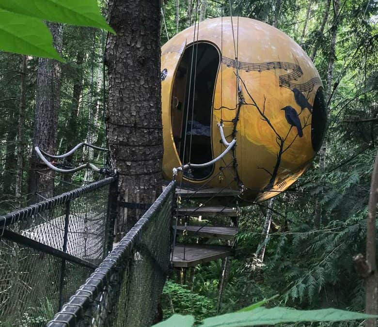 Free Spirit Spheres: Treehouses-in-the-Round on Vancouver Island
