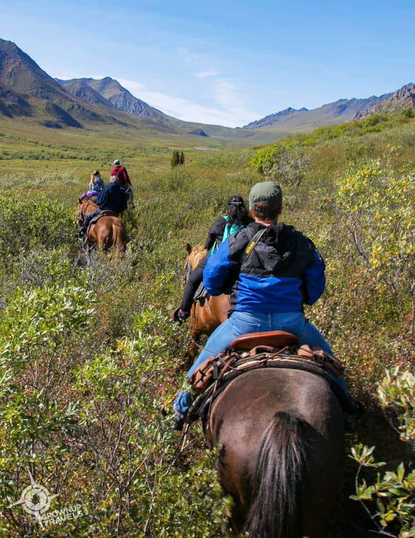 Trail riding in Tombstone Yukon