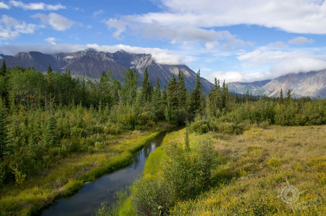 Creek near Haines Junction Yukon