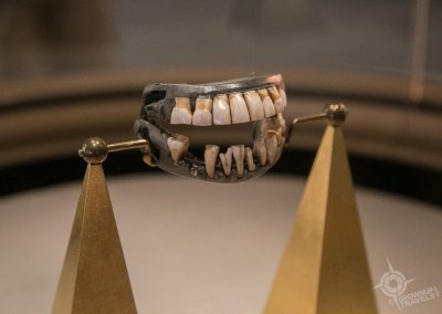 Washingtons Dentures Mount Vernon
