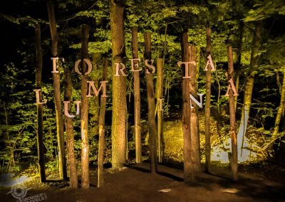 Foresta Lumina Sign night