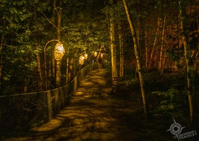 Lantern Paths Foresta Lumina Coaticook