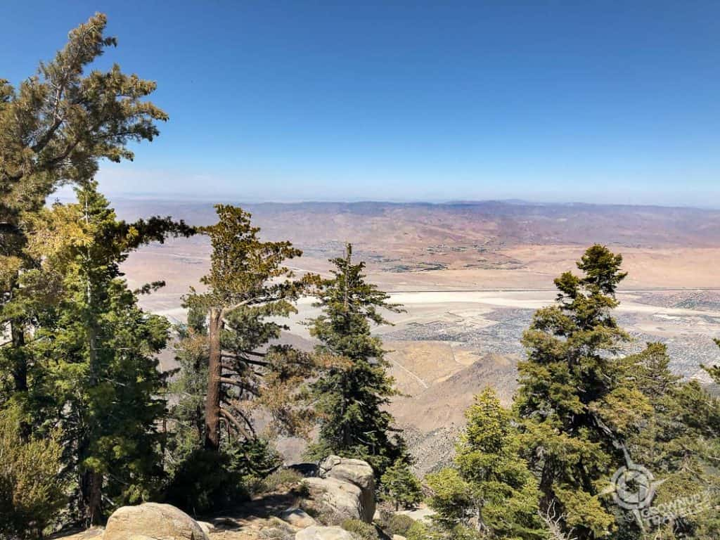Palm Springs Aerial Tram view from top