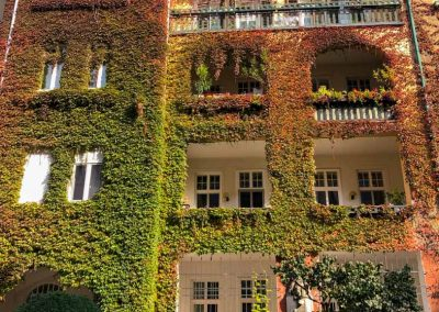 Bratislava Slovakia Ivy covered apartment building