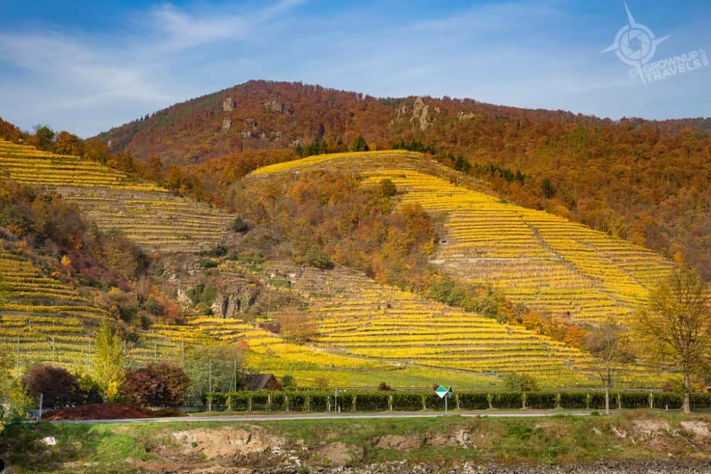 Wachau Valley Austria vineyards autumn