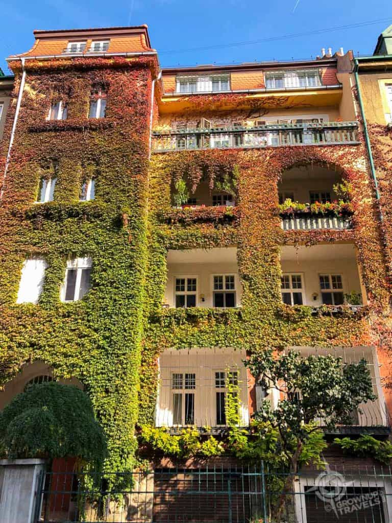 Bratislava apartment building with ivy
