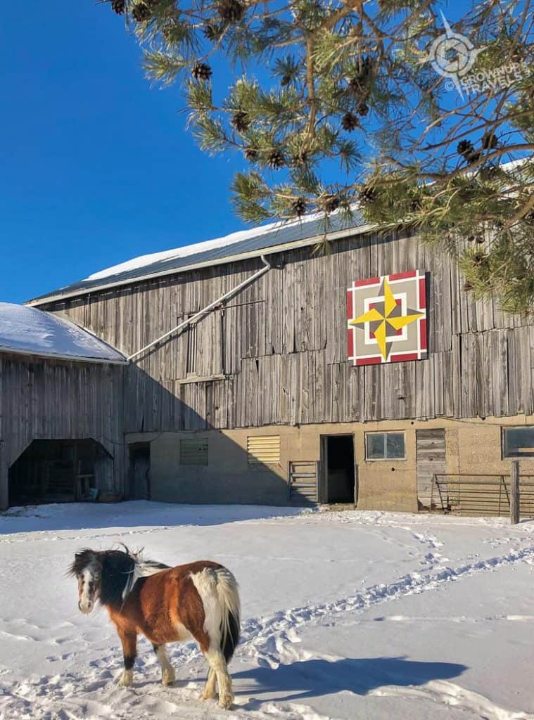 Hewson Barn Quilt and Pony