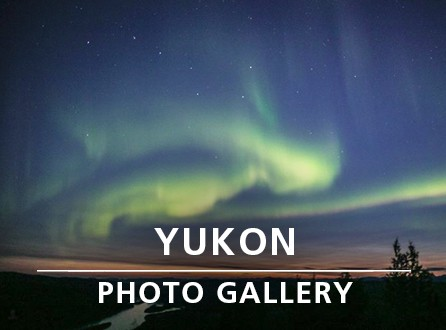 YUKON PHOTO GALLERY_link image